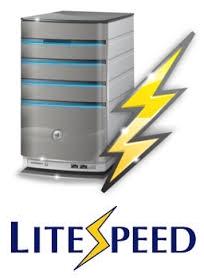 Fitur Hosting LiteSpeed